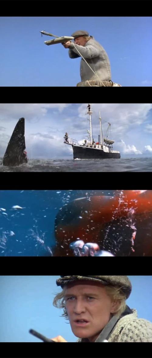 orca_filmstills